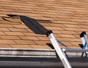 Repair any roof leaks Auckland wide